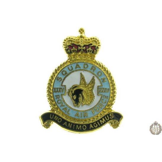 35 (XXXV) Squadron Royal Air Force Lapel Badge RAF