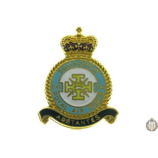 111 (CXI) Squadron Royal Air Force Lapel Badge RAF