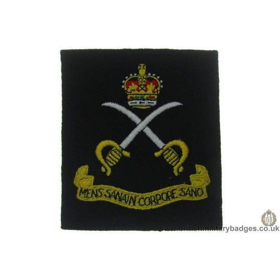 R1A/48 - Royal Army Physical Training Corps RAPTC Blazer Badge