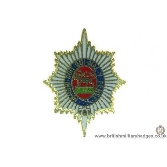 S1A/22 - The Worcestershire Regiment Lapel Badge